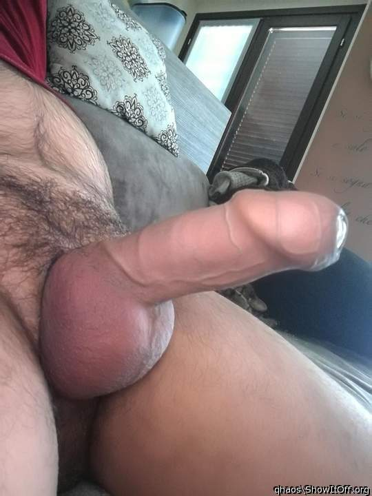beautiful foreskin and veins!! bet it tastes good!